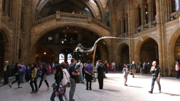 The Great Hall/Diplodocus Skeleton
