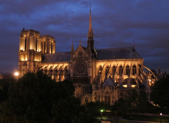 Notre Dame from our front window at night