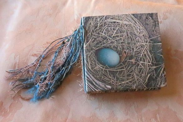 First journal: Robin's Egg Blue