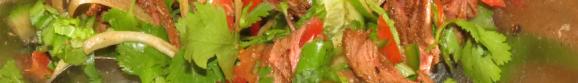 Thai Venison Salad